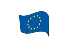 Europäische Bewegung Sachsen